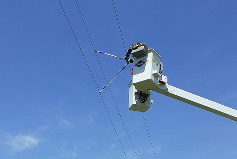 ЕРП Север реализира проект по обезопасяване на електропроводи в Тутракан